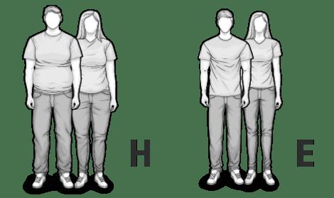 Ilustracja typów mieszanych H i E: wysoka, krępa oraz wysoka, szczupła kobieta