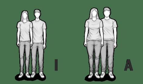 Ilustracja typów mieszanych I oraz A: szczupły i puszysty mężczyzna